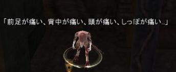 01pain