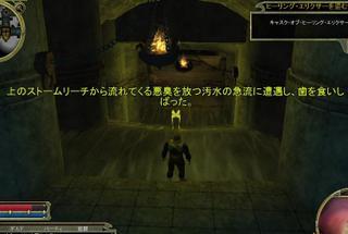Ddo_gesui1