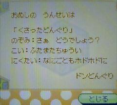 Donguri_omikuji