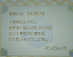 Donguri_omikuji2